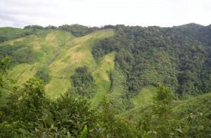 Nokrek National Park